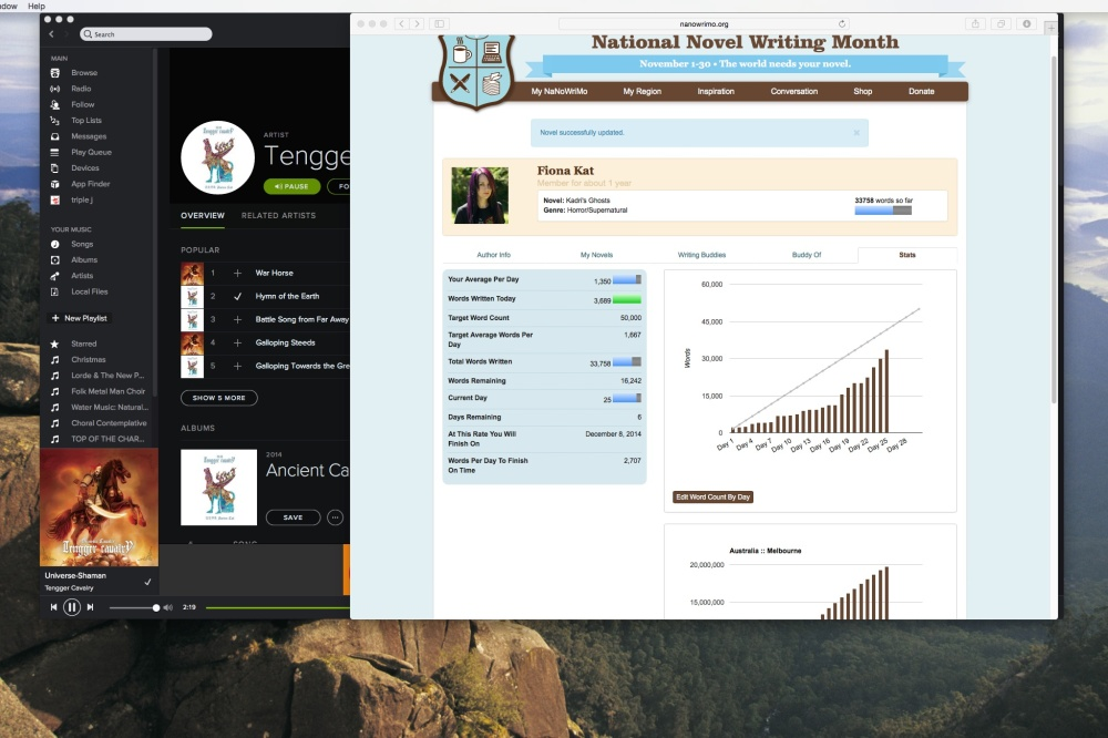 Screenshot of Day 25 Nanowrimo Progress, 10 PM